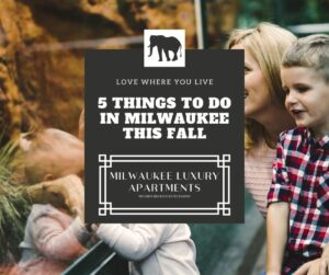 5 Things to Do in Milwaukee This Fall