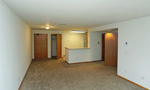 Empty Carpeted Living Room with Kitchen